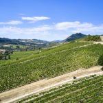 2021 Ducati Multistrada 950 S Receives New GP White Livery 72