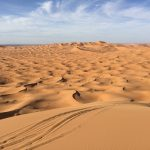 Seven Reasons You Should Ride in Morocco 16