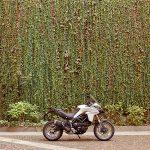 New Ducati Multistrada 950 Revealed 9