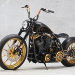 Roland Sands design/RSD Black Beauty test: super chopper 11