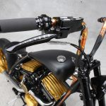 Roland Sands design/RSD Black Beauty test: super chopper 8