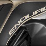 New Ducati Multistrada Enduro Pro. The GS Rallye challenger 7