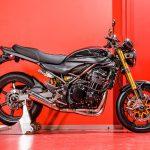 Kawasaki Z900RS gets three custom versions 2