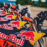 Meet the 2019 KTM Dakar Motorcycles 4