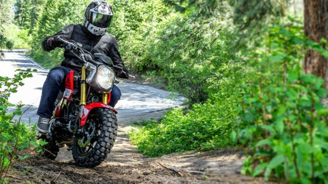 Honda Grom and Kawasaki Z125 go off-road 2