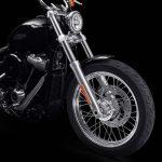 2020 Harley-Davidson Softail Standard Revealed 4