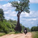 Couple Takes an Adventure Trip Through South America on DR 650 50