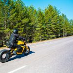 Wild Electric Motorcycle Comes with 1000Nm at an Affordable Price 19