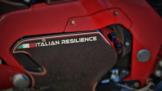 B_fmw italian resiliant 3