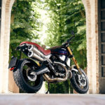 Ducati Unveils a Limited Edition Scrambler 1100 8